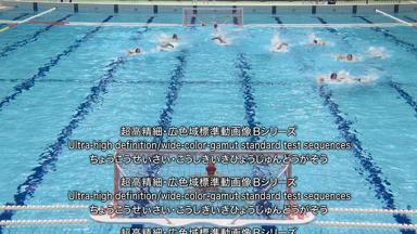 テストチャート 超高精細・広色域標準動画像 Bシリーズ